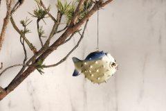 štedrá ryba zboku